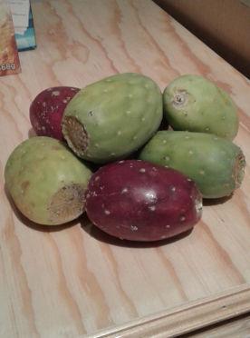 Rote und grüne Tunas.